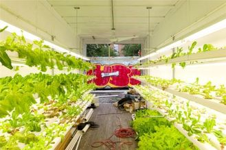 China Hydroponic Farming Prefab Container Homes  supplier